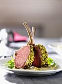Lamb chops with a pistachio crust