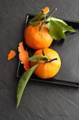 Mandarinen auf schwarzer Platte