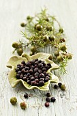 A sprig of juniper berries and dried juniper berries