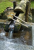 Spring water flowing into stone trough in Buddhist temple complex; Japan