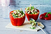 Cold peppers filled with tuna fish and cucumber
