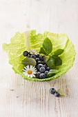 Blueberries and cabbage leaves topped the list of anti-cancer foods