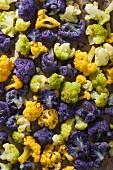 Colourful, boiled cauliflower