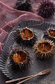 Sliced sea urchins