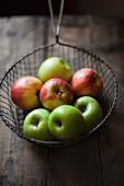Verschiedene Äpfel im Drahtsieb