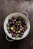 Tomatillos in a colander