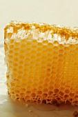 A honeycomb