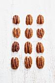 Pecannüsse in Reihen