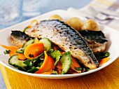 Mackerel with carrot and cucumber salad