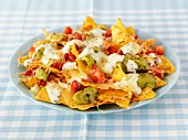 Nachos with cheese, salsa and guacamole (Mexico)