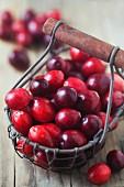 Frische Cranberries in einem Drahtkorb auf Holzuntergrund