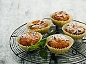 Apfelmuffins mit Nüssen und Rosinen