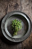 Thyme on a pewter plate