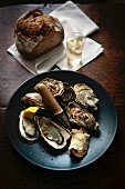 Marennes oysters with bread