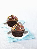 Chocolate cupcakes with colourful sugar sprinkles