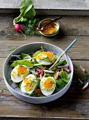 Stuffed eggs with trout caviar on a spinach salad with radishes