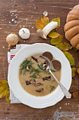 Autumnal mushroom soup with sprig of dill and pumpernickel bread