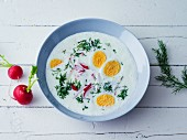 A cold summer soup with yoghurt, radishes, dill and hard-boiled eggs