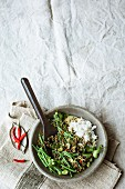 Bean curry with lentils, coconut milk and coriander
