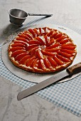 French apricot tart