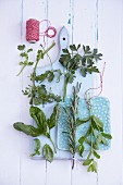 Fresh herbs and kitchen twine