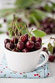 A cup of cherries with stems