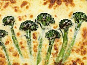 Broccoli quiche with cheese (close-up)