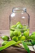Junge grüne Walnüsse im Glas zur Herstellung von Marmelade