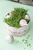 Fresh herbs and cloves of garlic