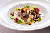 Cod fillet with octopus, broad beans and chanterelle mushroom on mayonnaise