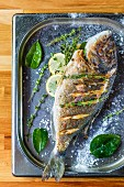 Oven-baked seabream with herbs and lemon