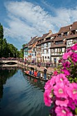 Sailing over the loch in a ferry past half-timbered houses, Colmar