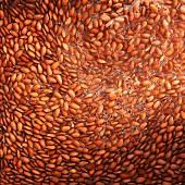 Flax seeds, softened (full frame)