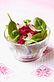 A spring salad with grated beetroot and Parmesan cheese