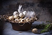 Quail eggs in vintage bowl lined with straw and feathers with rosemary and thyme next to it