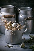Quail eggs in an aluminium mug with old milk churns in the background