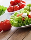 Lollo biondo lettuce with tomatoes and mozzarella