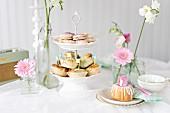 Romantisches Buffet mit Keks-Sticks, gefüllten Hefebrötchen und Mini-Napfkuchen