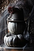 Black pumpkins with a hat and a spider