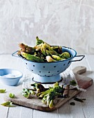 Waterblommetjies (Cape Pond Weed) in an enamel colander
