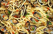 Spaghetti vongole (full frame)