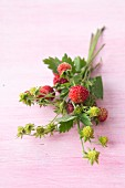 Wild strawberries with leaves