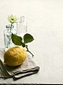 A lemon with a stem and leaves on a linen napkin