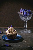 A chocolate cupcake with coffee buttercream and lavender flowers on a blue plate