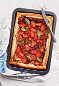 Tomato and Tapenade Tart