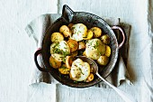 Hearty roast potatoes with Herz cheese and caraway seeds