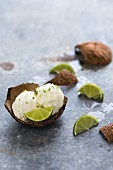 Kokos-Limetten-Eiskugeln in Kokosnussschale