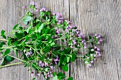Fresh oregano with flowers on a wooden surface