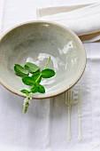 A sprig of fresh mint in a ceramic bowl