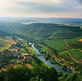 Village and vineyards of Oberhausen with its bridge over the Nahe River. Germany. [Nahe]